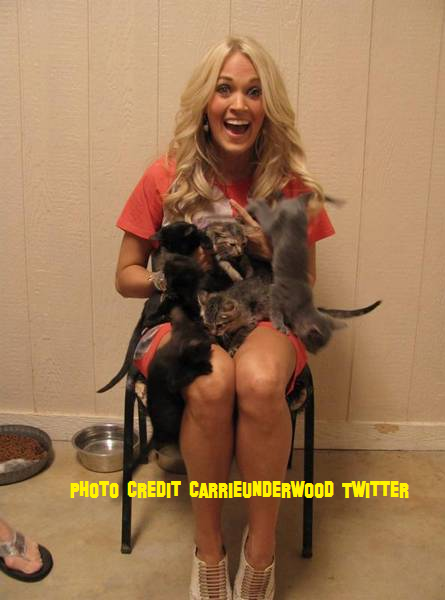 Carrie Underwood Goes To The Animal Shelter!