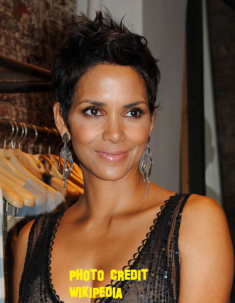 Halle Berry Is Holding Off The Wedding Until After France Move!