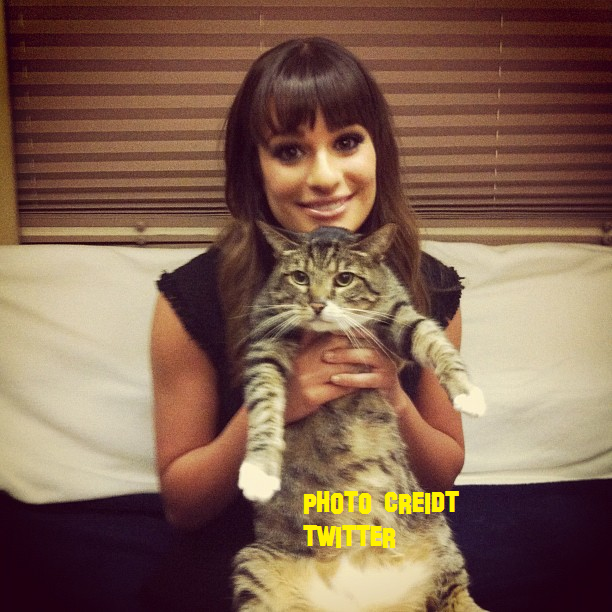 Is Lea Michele Pregnant