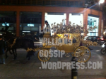 Lady Gagas horse and cart at harrods london