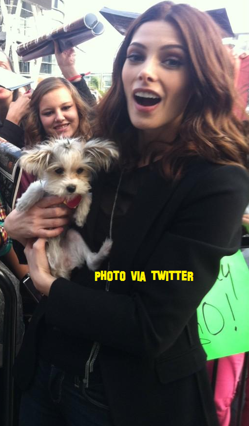 Ashley Greene Walks Out of The Twilight Promo!