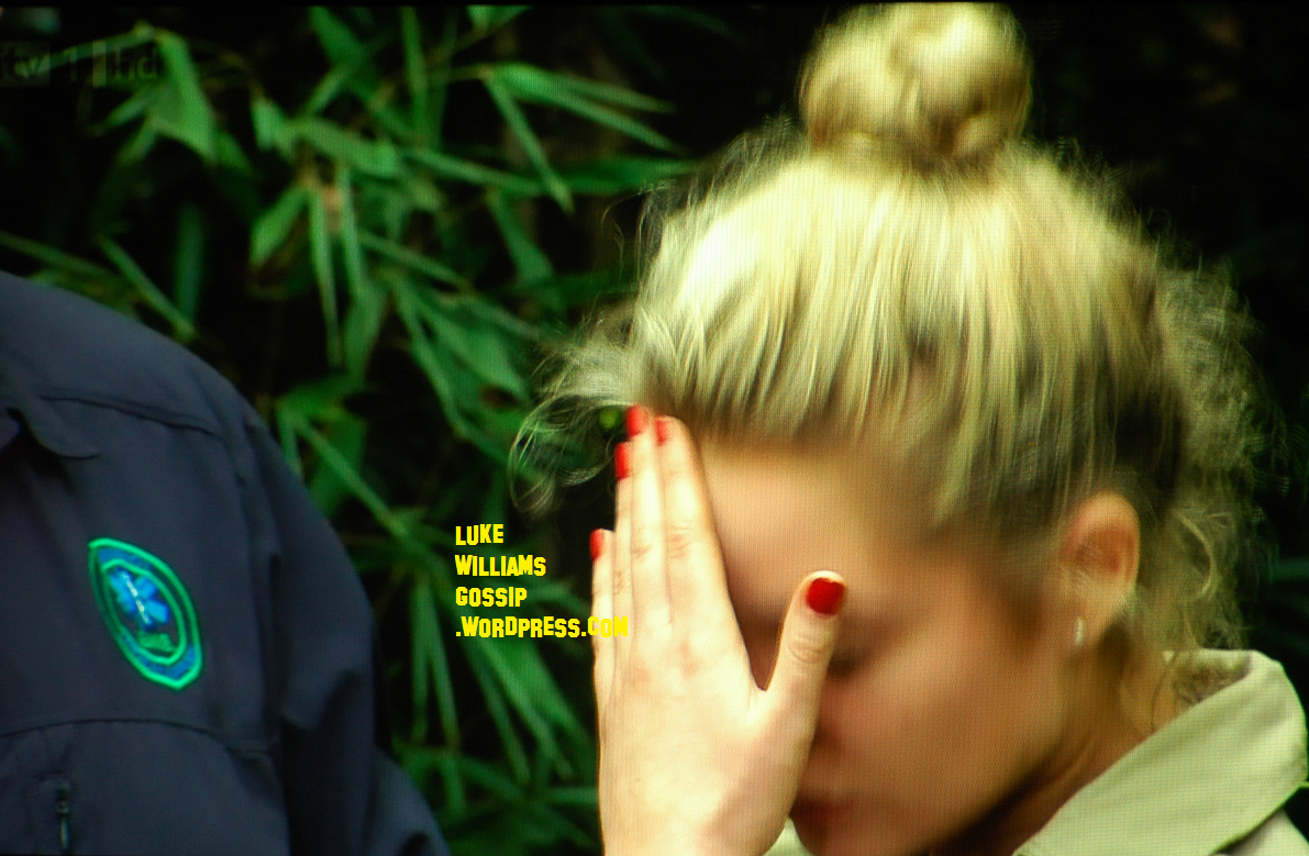 both i'm a celebrity… camps go hungry as helen flanagan and mp
