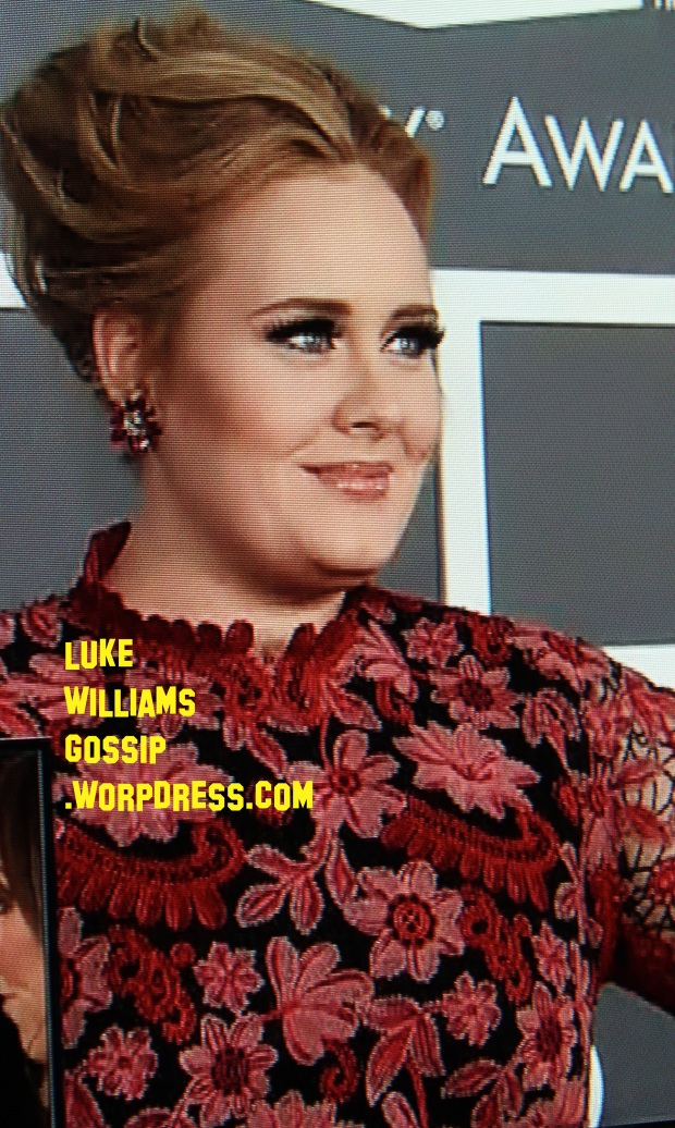 Adele Shows Up To The Grammy Awards 2013 PHOTOS HERE!
