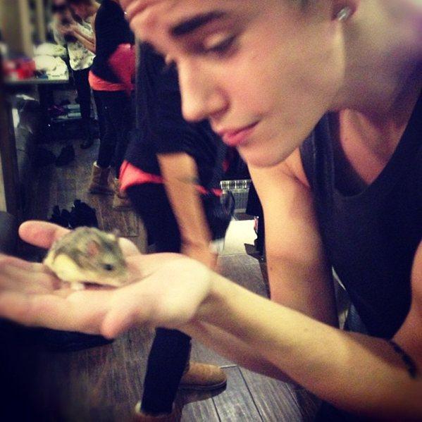 Justin Bieber's Hamster Passes Away!